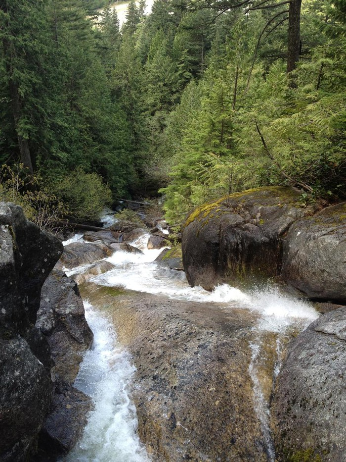Foto de  Shannon waterfall Squamish