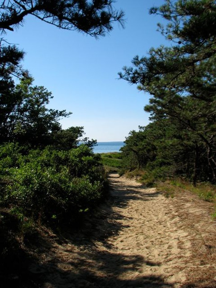 Foto de  Cape Cod Great Island Trail