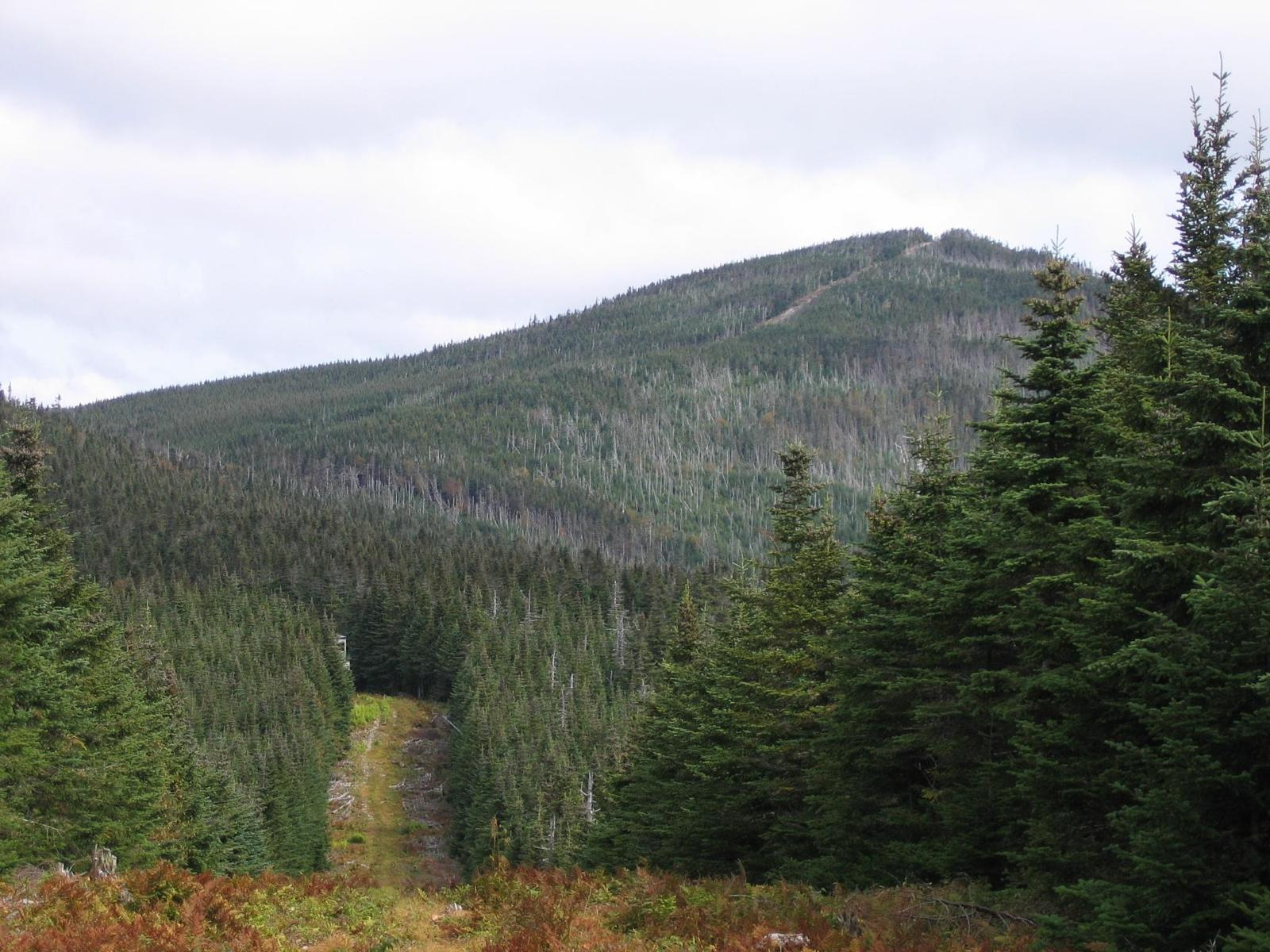 Photo of Boundary Mtn from Cupsuptic Pond ME