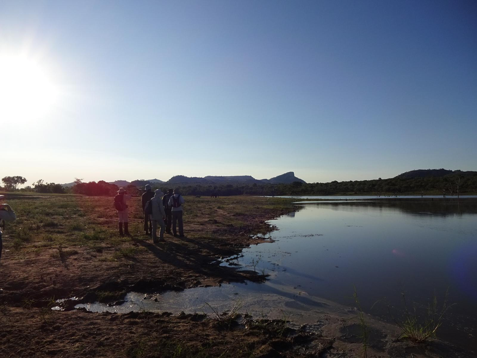 Foto di Kruger - Wolhuter trail - day 1 - Evening drive