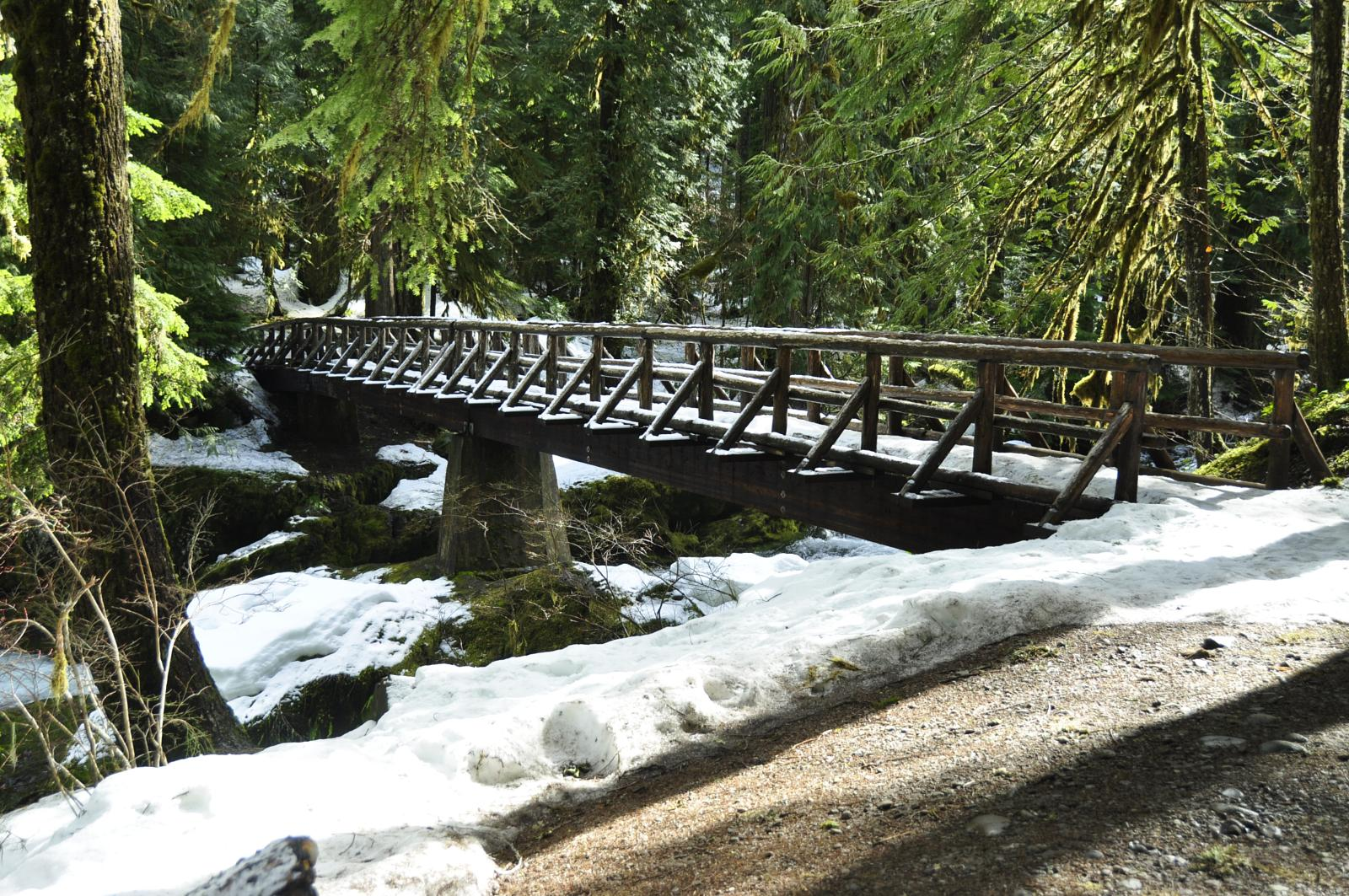 Wikiloc - Photo of Bagby Hot Springs Trail, near Estacada, Oregon (2/2)
