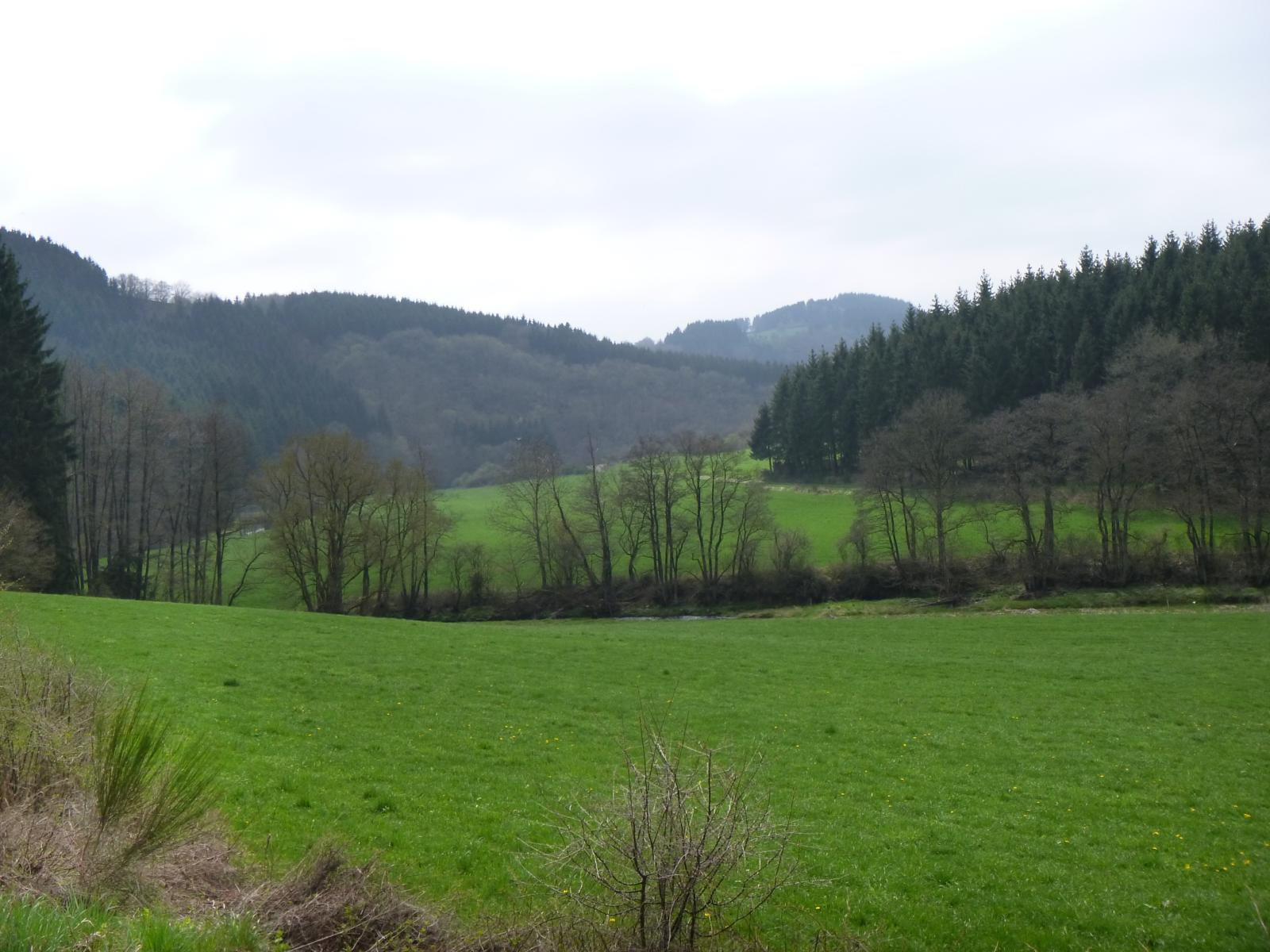 Photo of Naturwanderpark delux: Eifelgold Route (5hrs)
