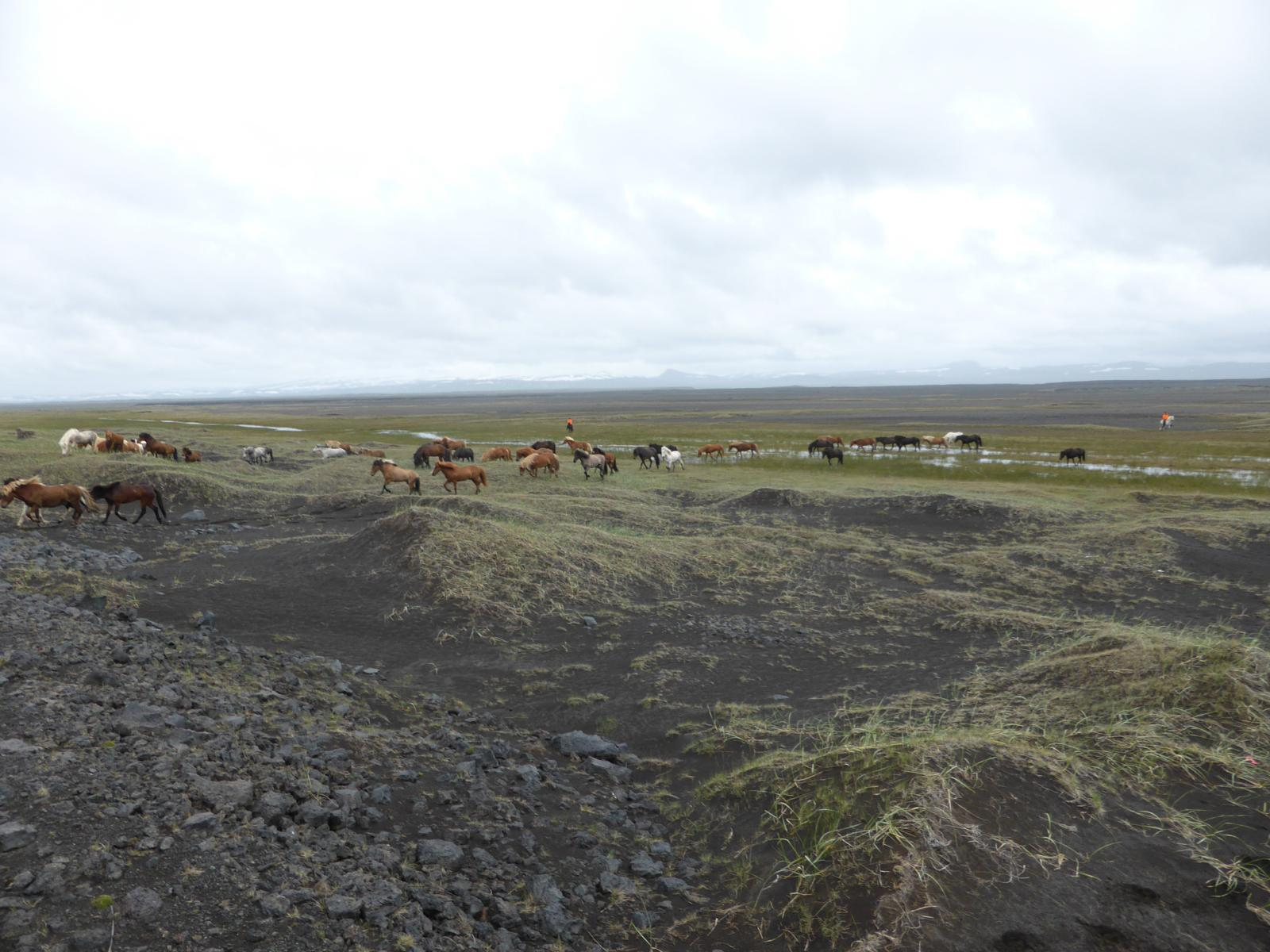 mynd af Into the wild, day 5. Riding Iceland.