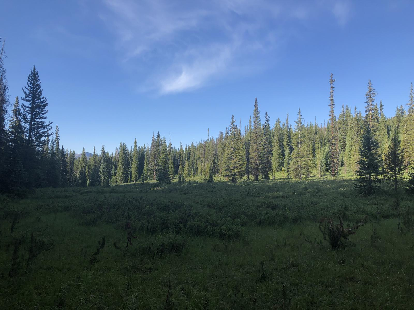 Photo of Continental Divide Trail day 64: From valley after Devils Thumb Pass to Grand Lake