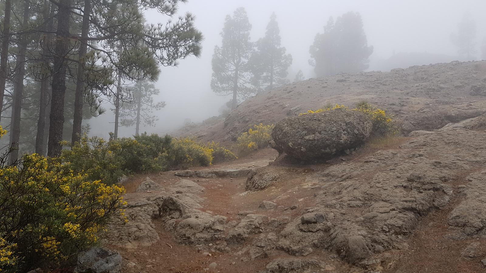 Photo of CUMBRES DE GRAN CANARIA,VENTANA DEL NUBLO