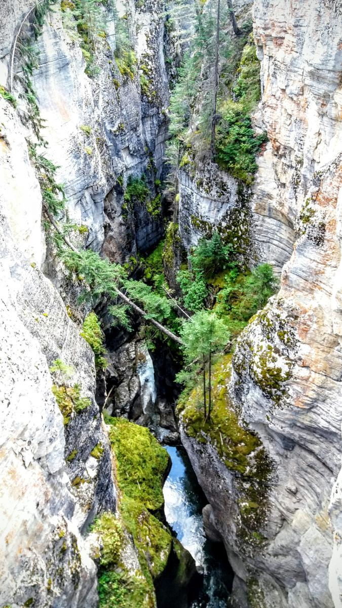 的照片 Maligne canyon. Jasper National Park.