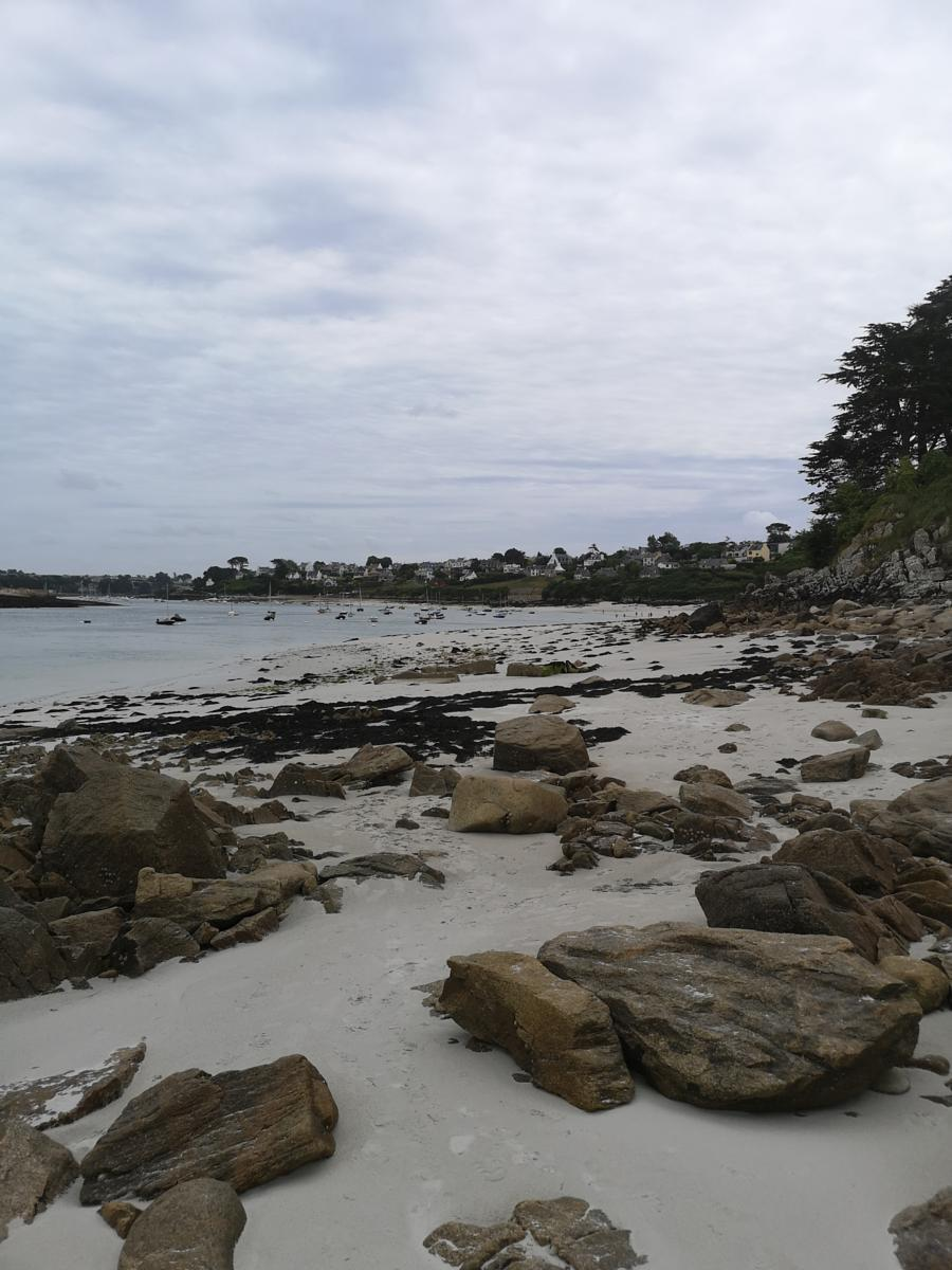 Photo of Spaziergang am Strand bei Ebbe.