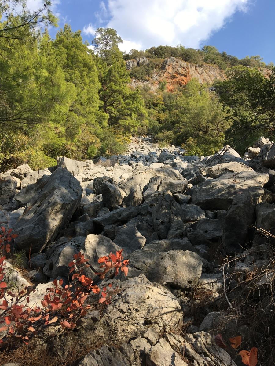 Fotoğraf: From Olympos straight south on the old Lycian Way
