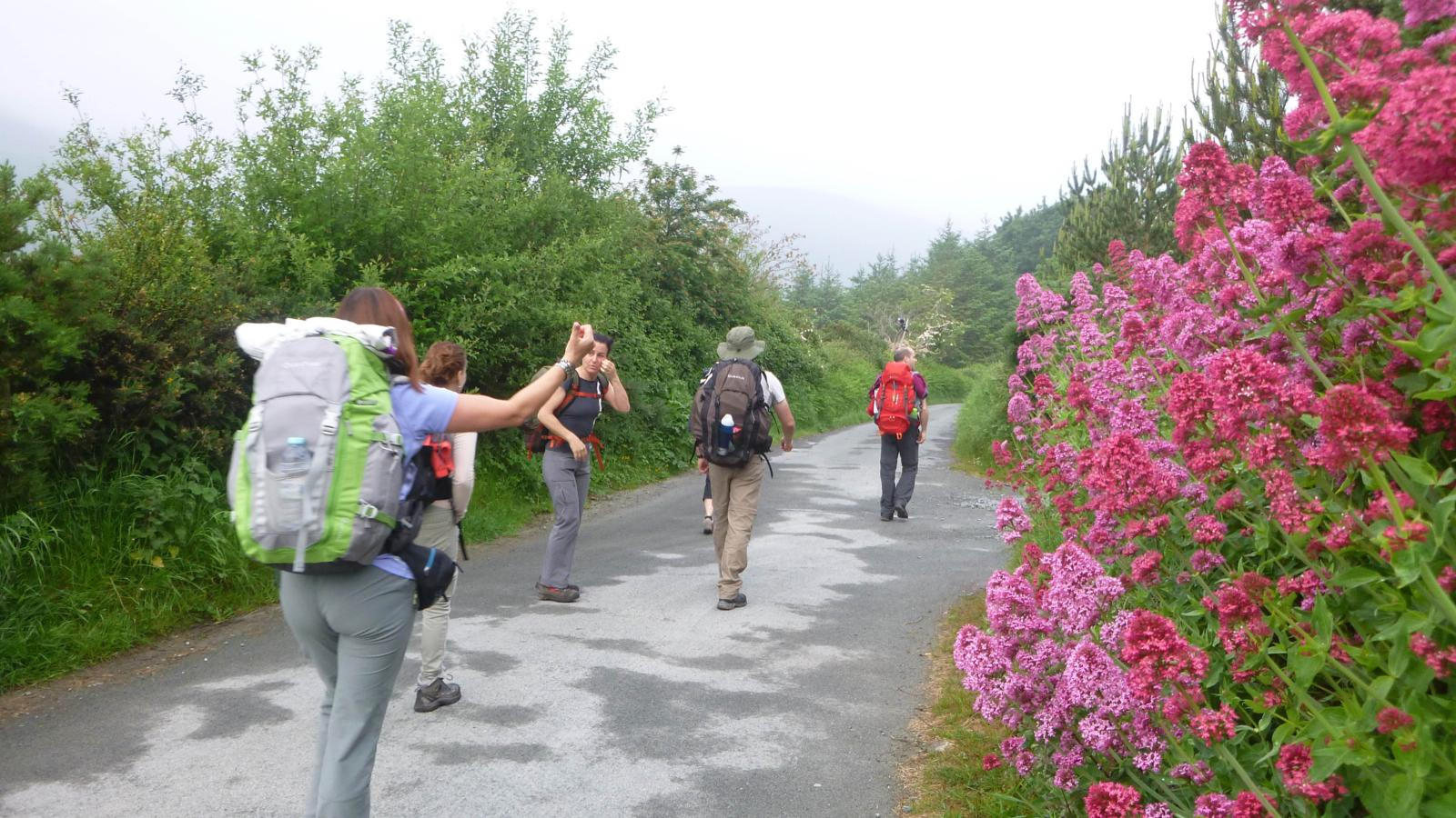 Photo of 2ºDIA: KNOCKREE - GLENDALOUGH