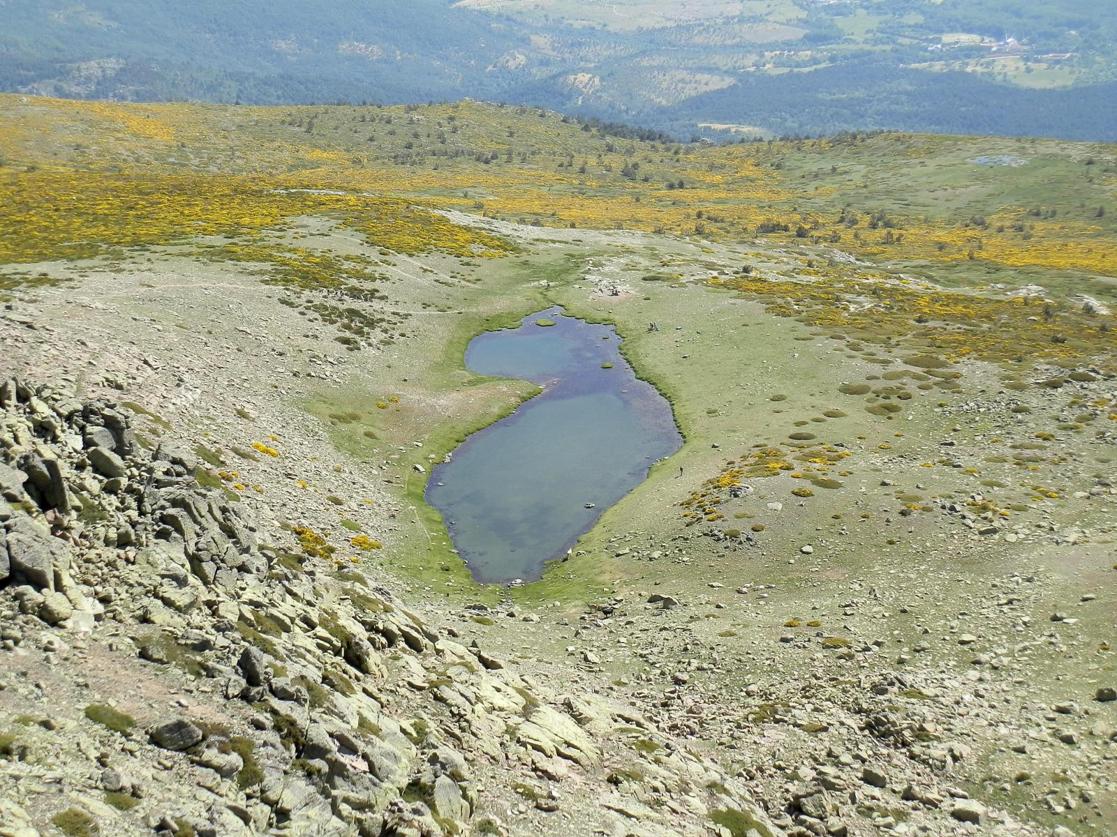 Photo of Laguna de los Pajaros