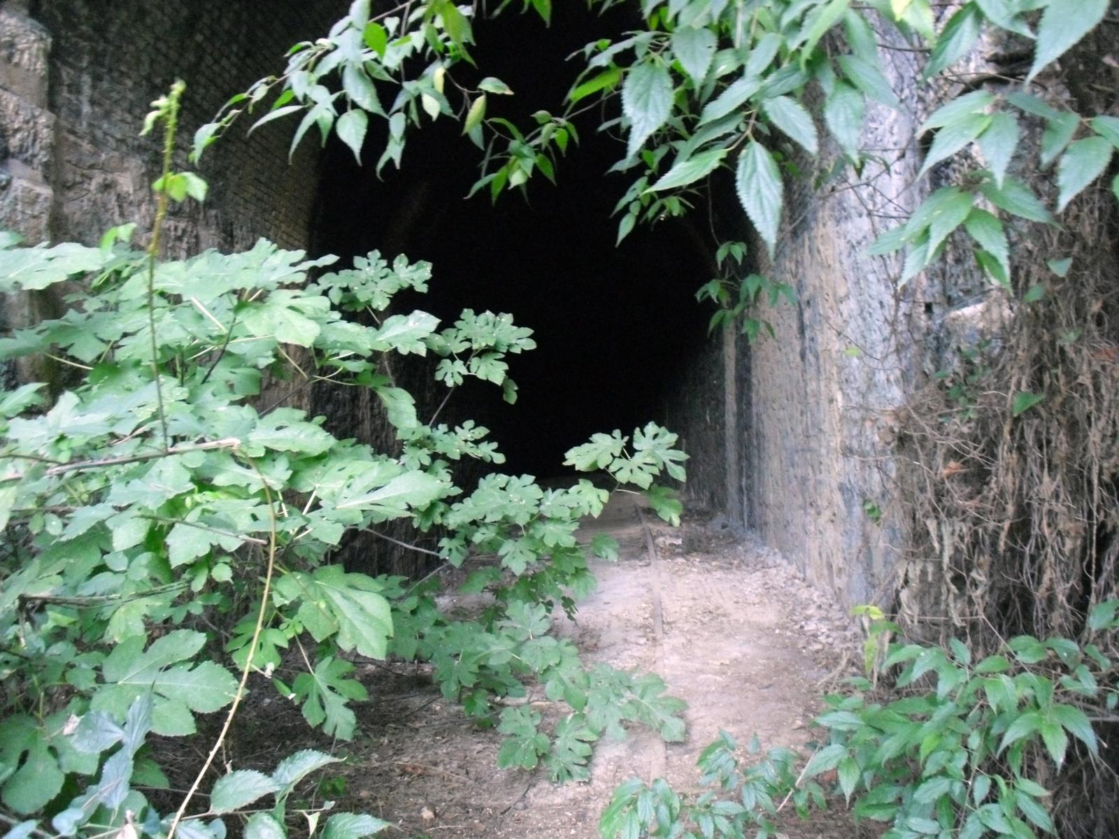 Photo of 02-Túnel 1 (Piñoneros - 141 m.)