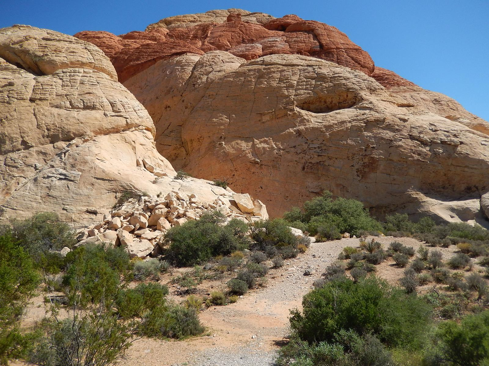 Photo of Red Rock Trail