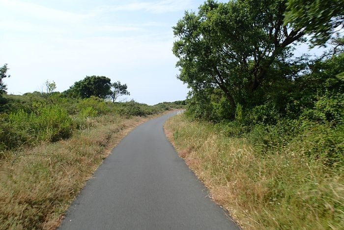 Φωτογραφίες Piste cyclable:  Labenne - Capbreton