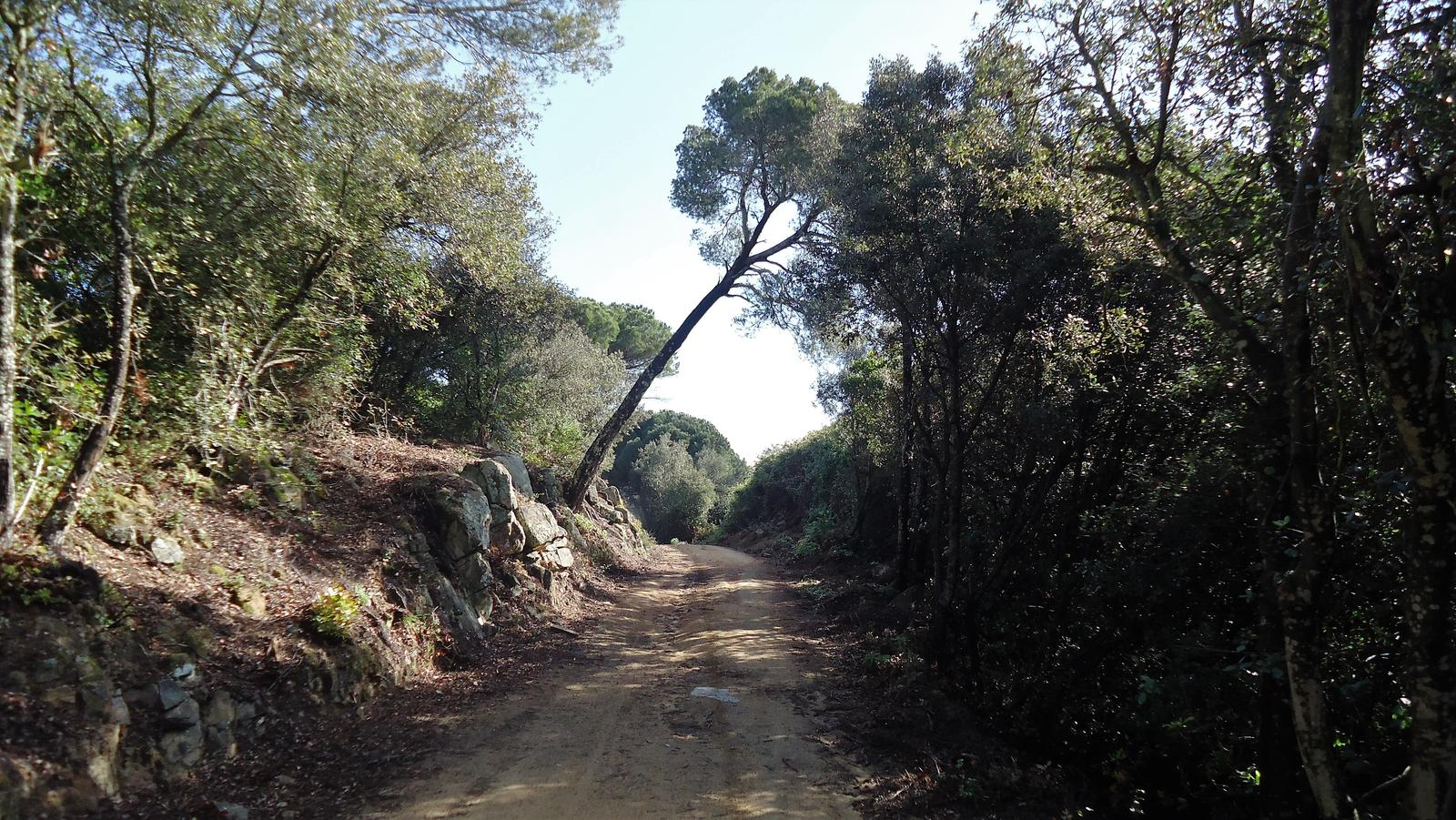 Photo of Coll de Sant Bartomeu