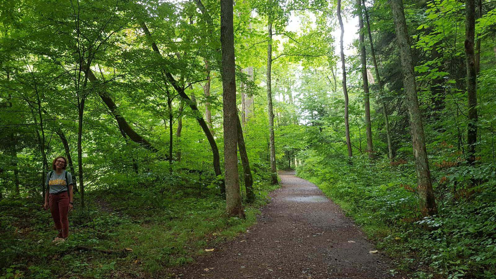 mynd af Mohican States Park and Forest