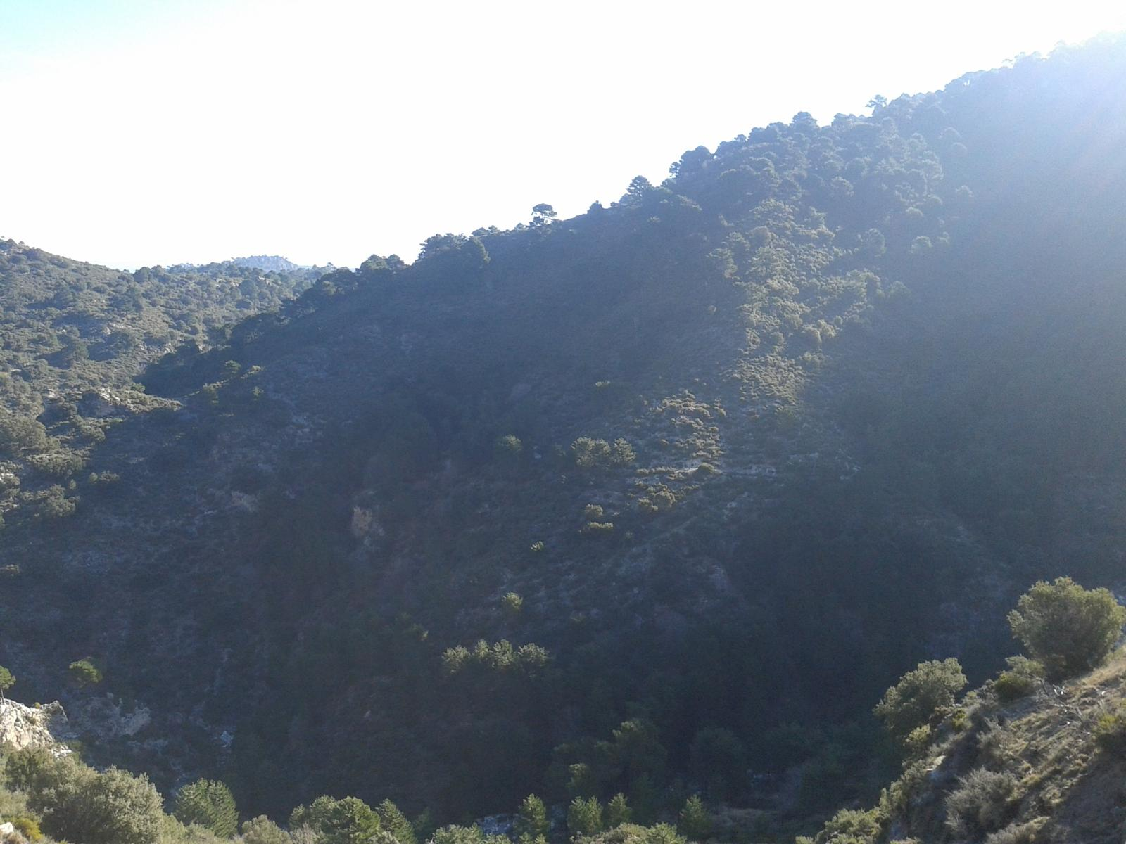Photo of Sendero a Cortijo Cabañeros