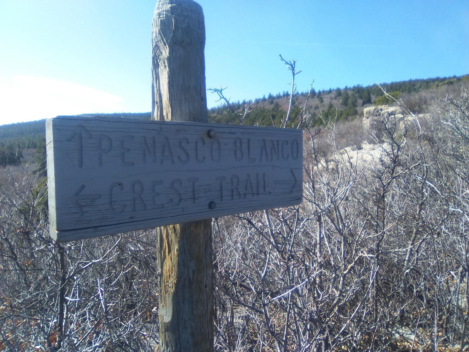 Photo of North Crest Trail 130-Kiwanis Cabin Trail-South Crest Trail