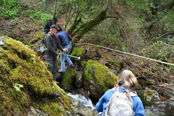 Photo of 1st Creek Crossing