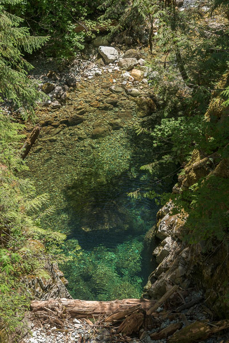 Foto van Opal creek and Copetski trail