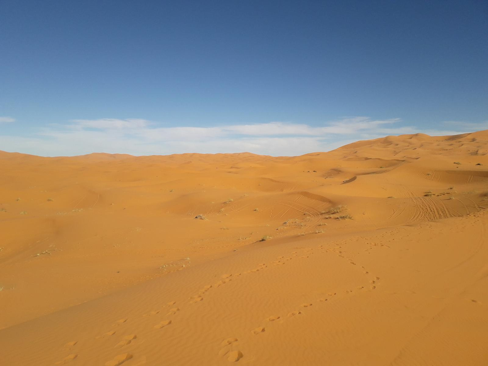Photo of Dunes Erg Chebby