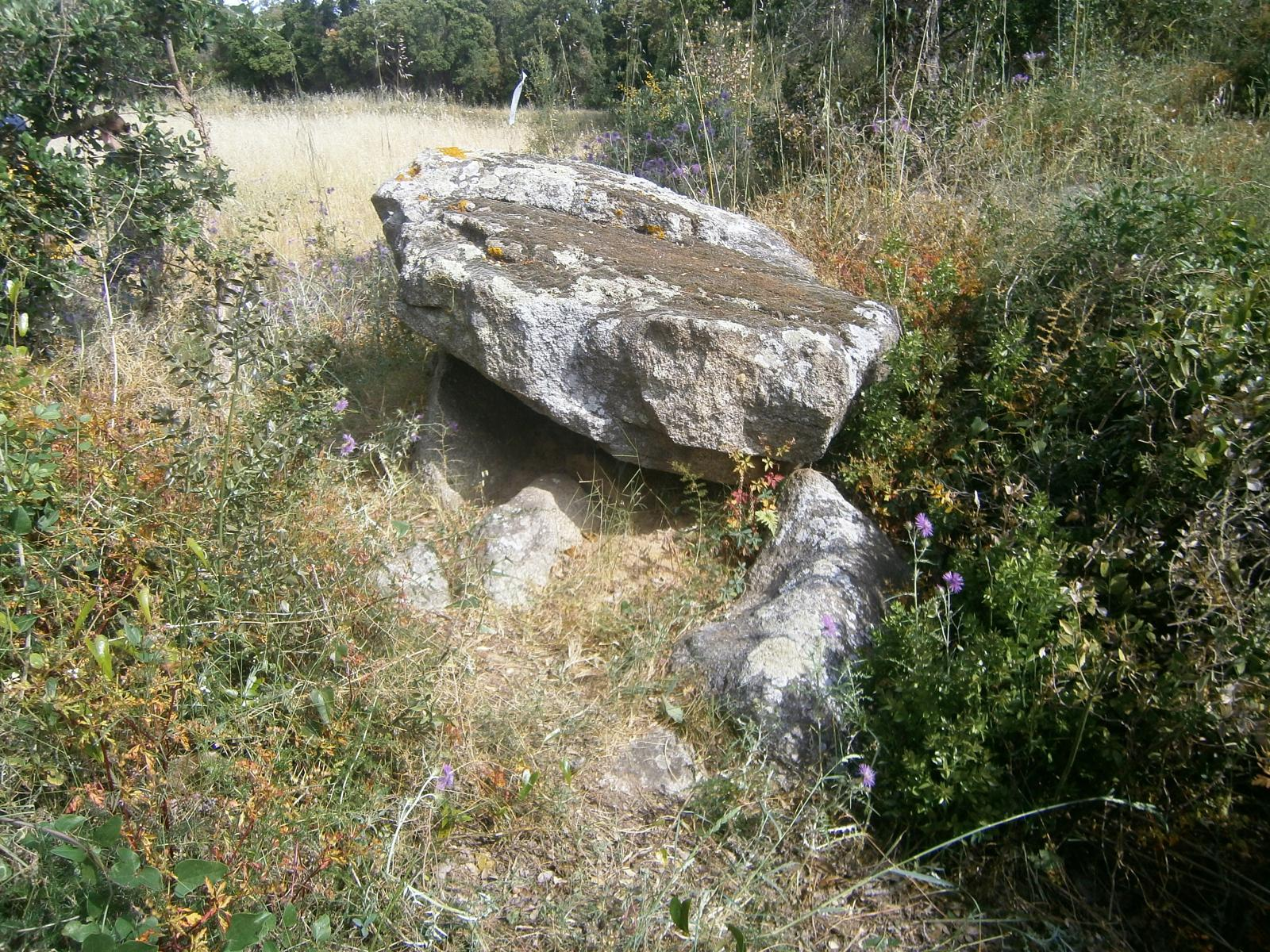 Foto de Possible dolmen de Can Mont