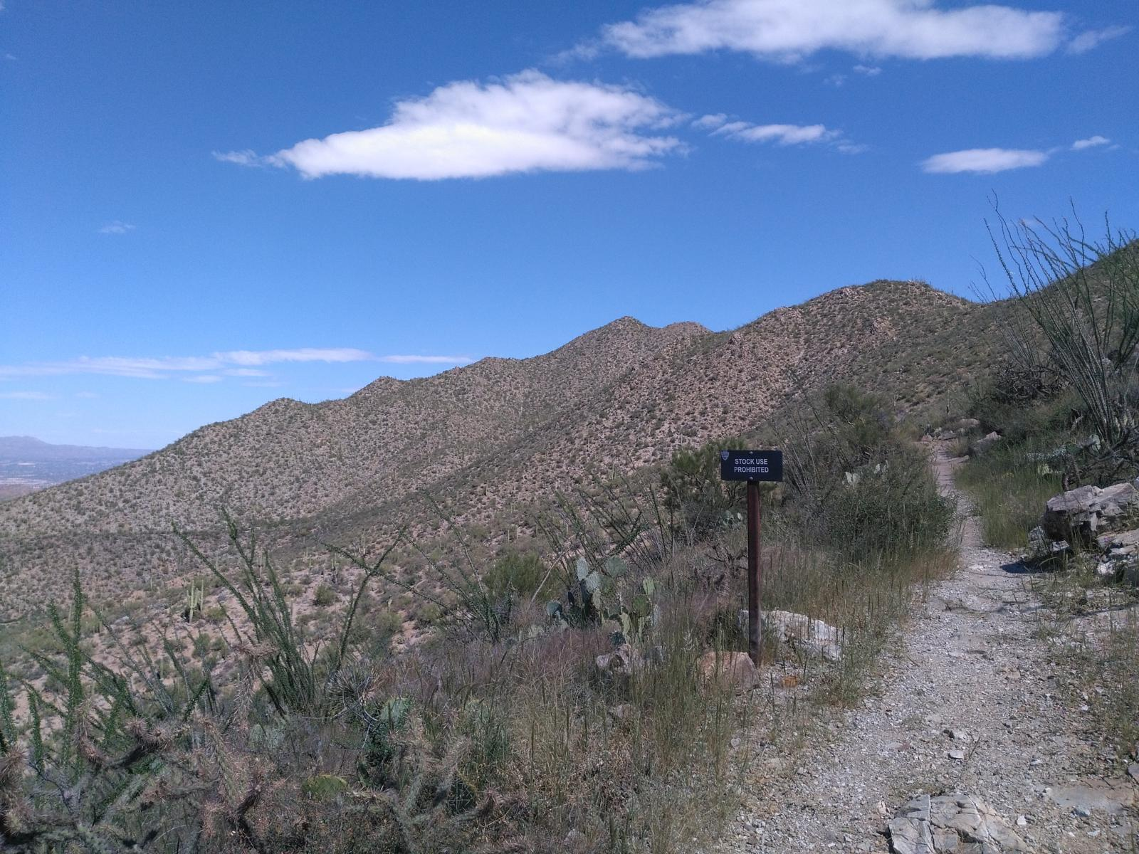 Photo of 2016/09 Saguaro National Park trail uphill