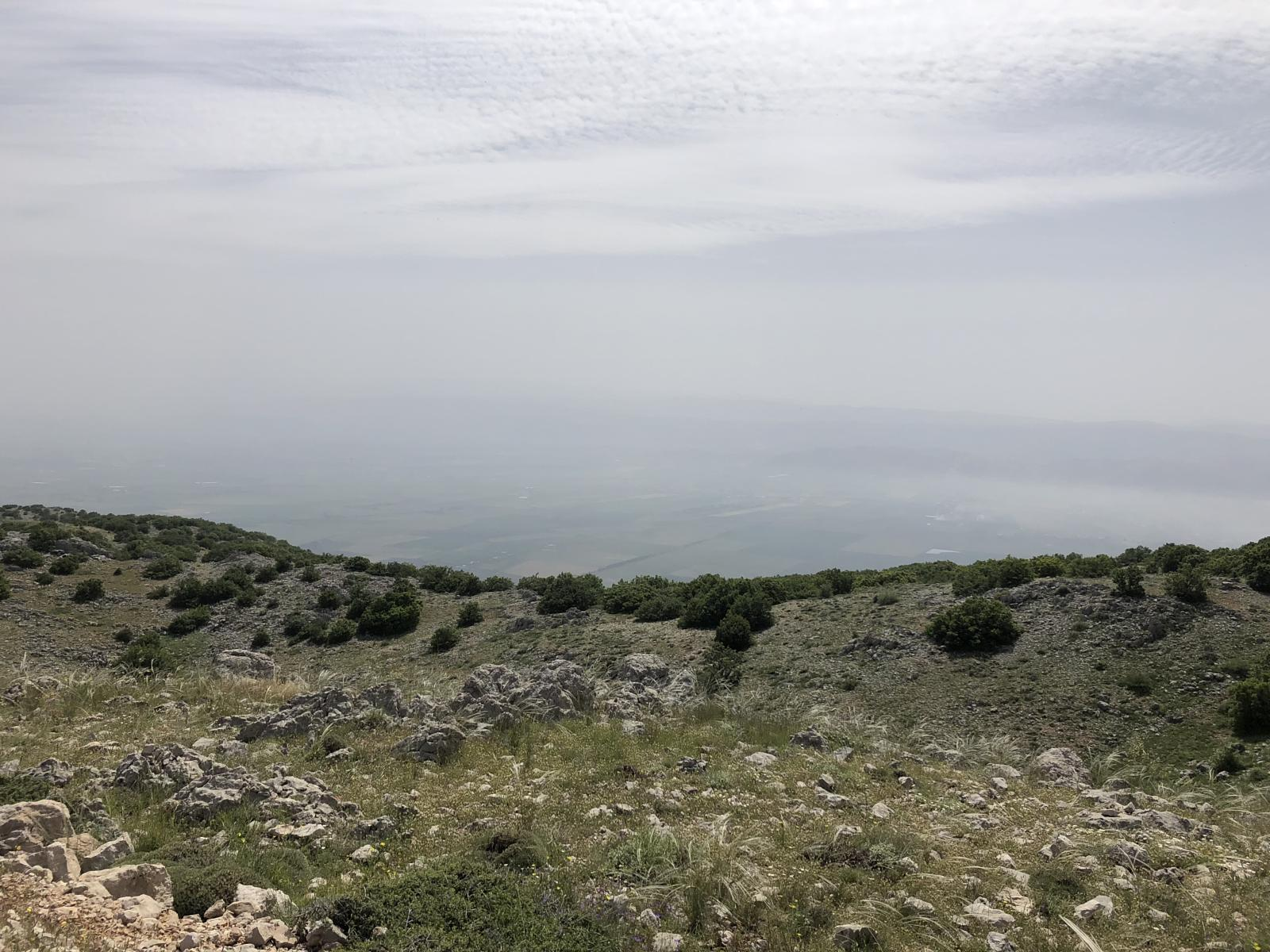 Photo de 2018-05-21 Trail Running Ain Zhalta Cedar Forest to Barouk Cedar Forest