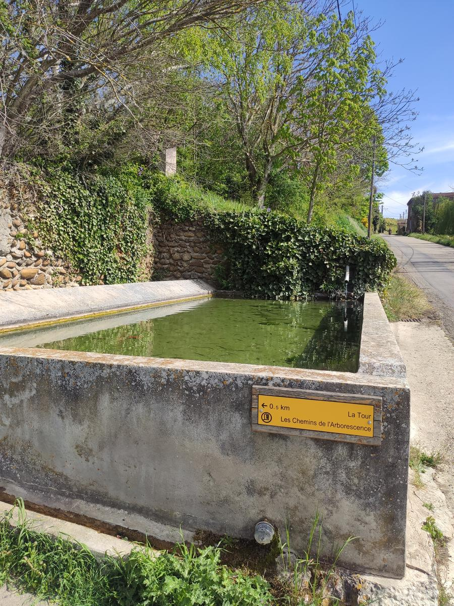 Photo of Fontaine
