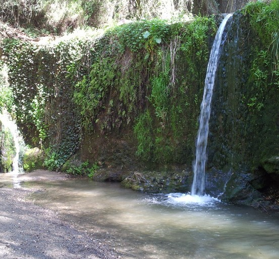 Photo of Salto de Agua del Papiol