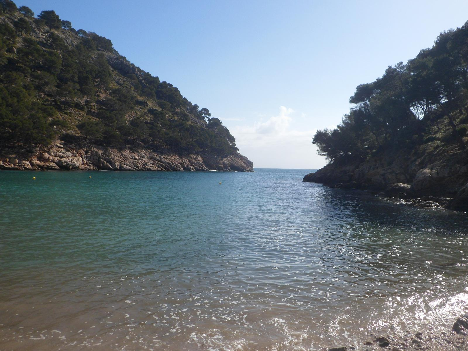 Photo of Cala Murta & & Cala Figuera - 28-02-15