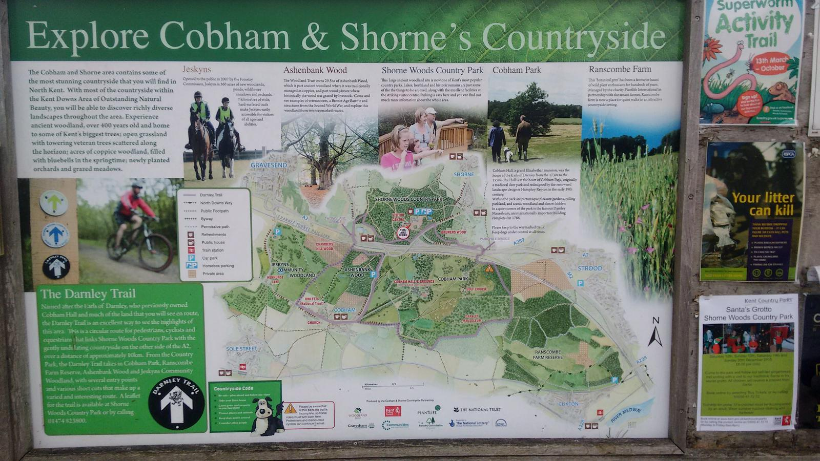 Photo of DARNLEY TRAIL - Shorne and Cobham Woods (Kent, UK)
