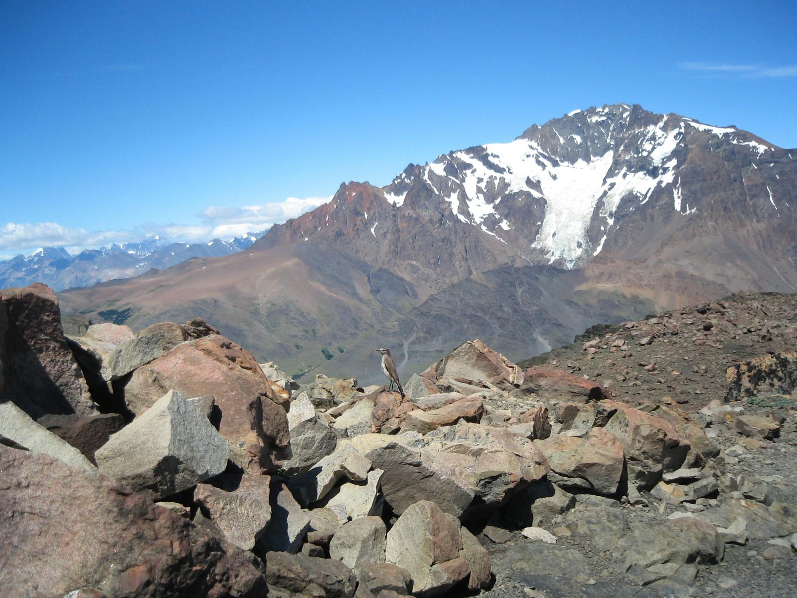 Photo of EL CHALTEN-LOMA DEL PLIEGUE TUMBADO