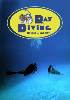 ray diving cozumel